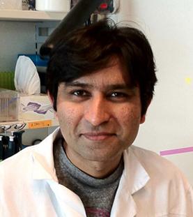 Dr. Sachin Kotak